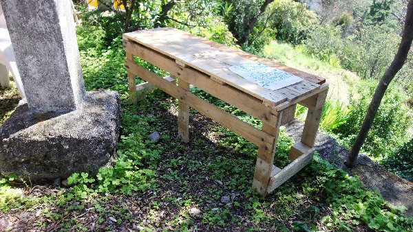 jardin-tordu