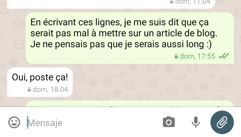 Capture d'écran d'une conversation sur DeltaChat